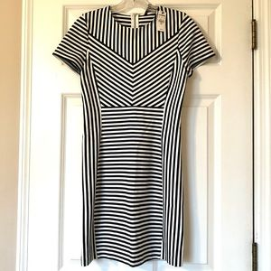 Express Dresses - Express Striped Fitted Dress